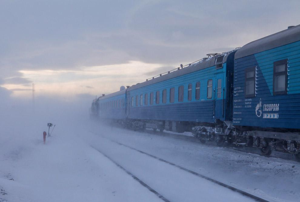 32. Наш чартерный поезд. Обратите внимание на последний вагон — это дизель-генератор. Все поезд