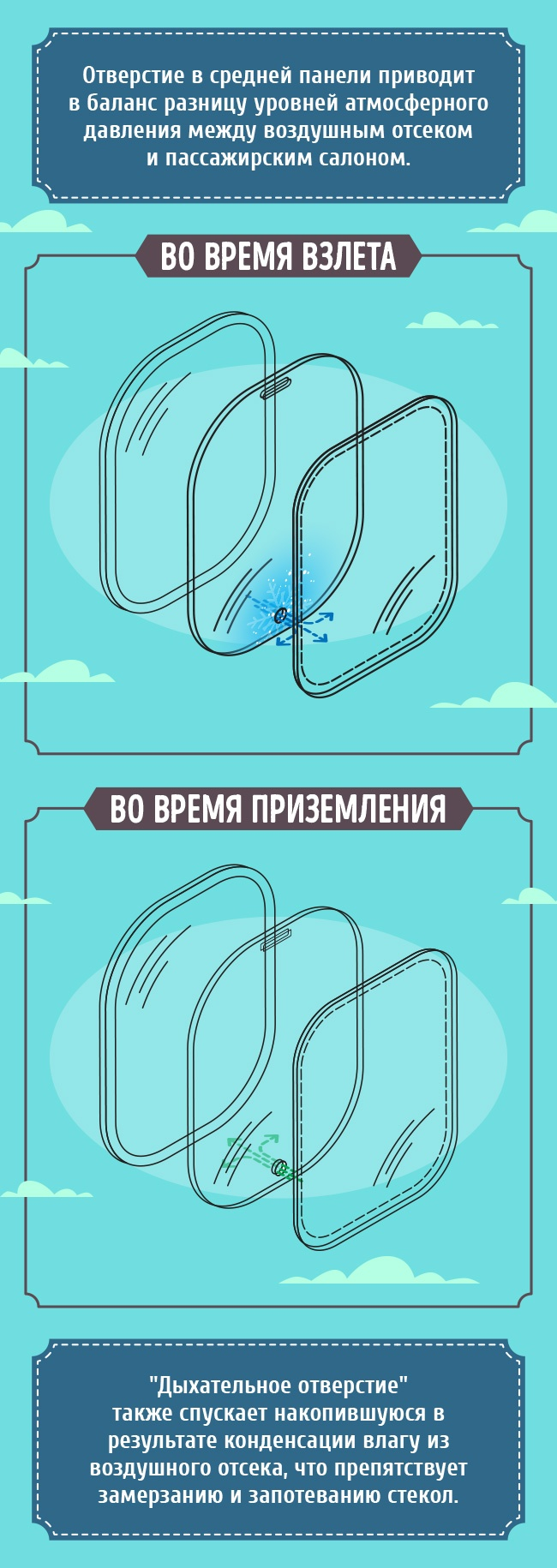 Иллюстратор Алёна Дурнева