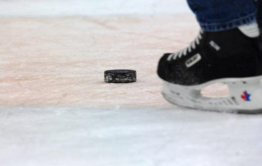 ВПетербурге стартует предсезонный хоккейный турнир имени Пучкова