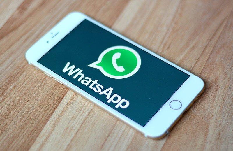 В новейшей версии WhatsApp появился поиск поGIF-изображениям