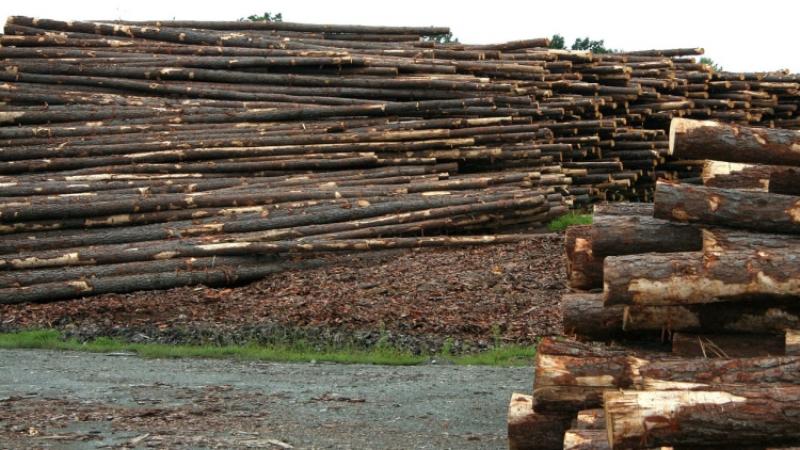 Мантуров предлагает развивать деревянное домостроение вРФ