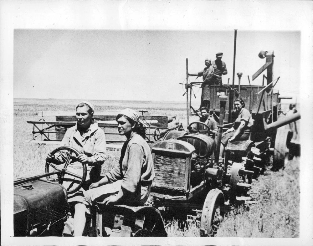 1945. Кубань, Россия. Колхозники собирают урожай пшеницы.jpg