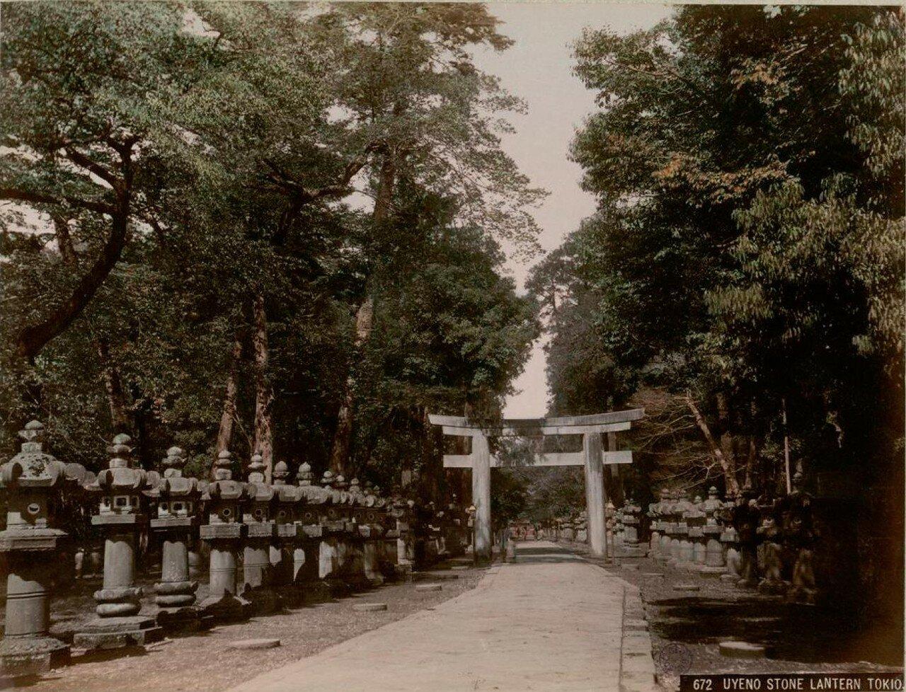 Токио. Высочайше пожалованный парк Уэно. Каменные фонари