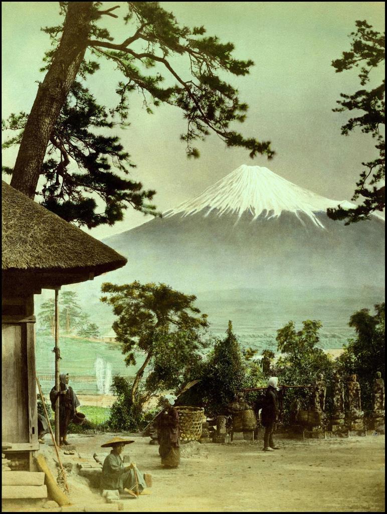 Вид на Фудзи сквозь сосны Судзикавы