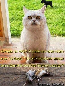 https://img-fotki.yandex.ru/get/28982/194408087.13/0_1373af_6481ec0a_M.jpg
