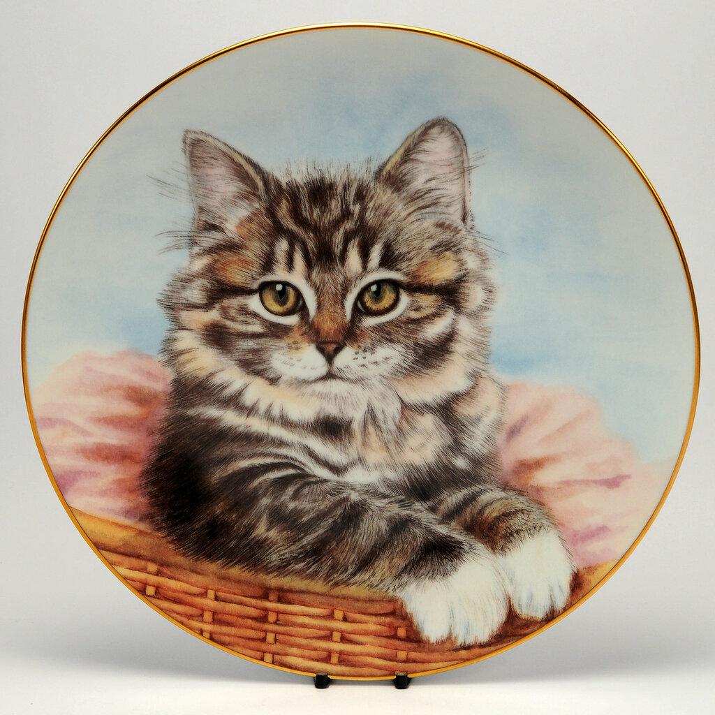 decorative-cat_plate-hamilton-bright-eyes.jpg