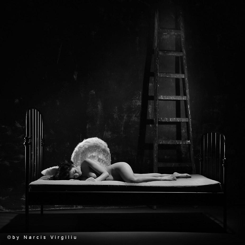 чернобелая эротика / nu-art by Narcis Virgiliu