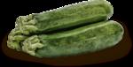 kimla_littlegarden_vegetable_sh.png