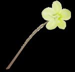 natali_design_easter_flower16-sh1.png