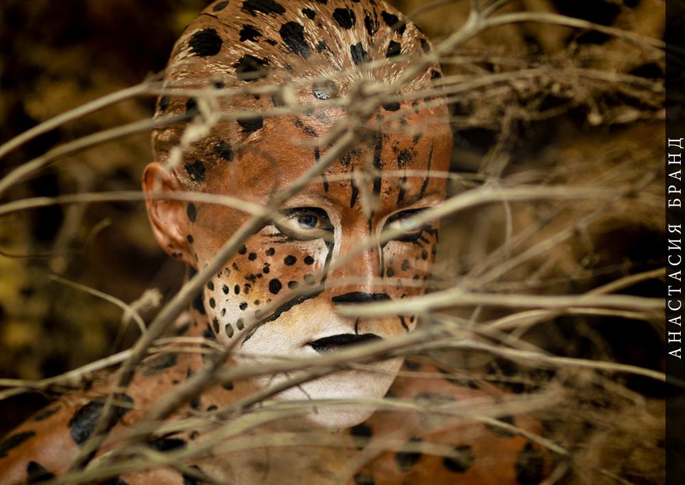 Фотографии с авторского проекта Анастасии Бранд «ANIMALS»