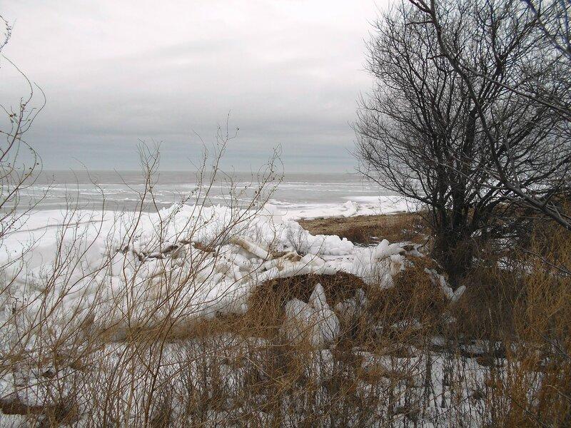 Берег зимний, Азовский ... DSCN3338.JPG
