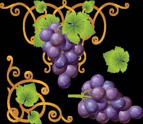 виноград (22).png