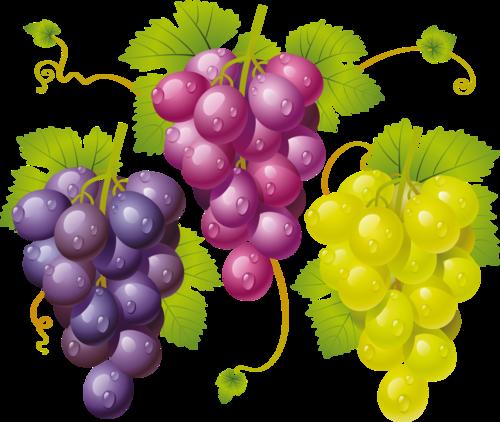 виноград (32).png