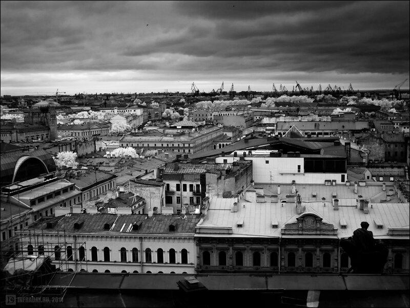 Санкт-Петербург. Город