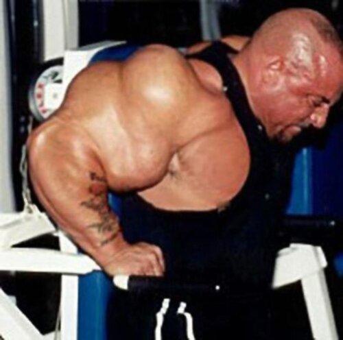 Самые большие женские мускулы фото фото 674-221