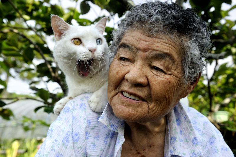 14 Бабушка Мисао и Кот Фукумару.jpg