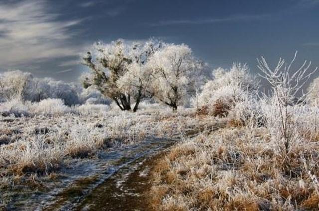 100 самых красивых зимних фотографии: пейзажи, звери и вообще 0 10f59a babd1729 orig