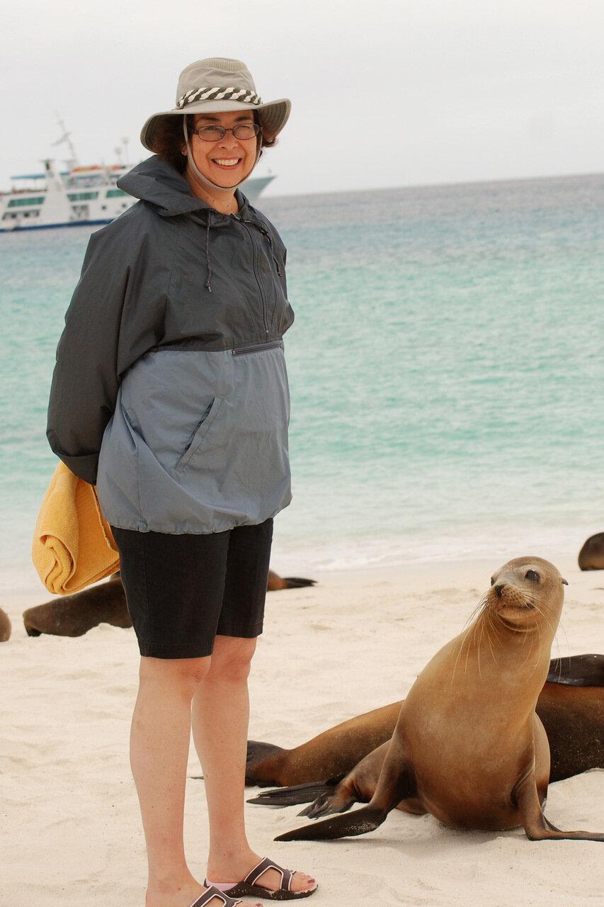 Gardner Bay,  Isla Española / Galapagos Sea Lion