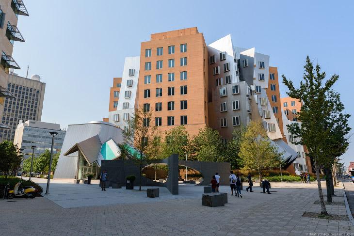 Массачусетский технологический институт (30 фото)