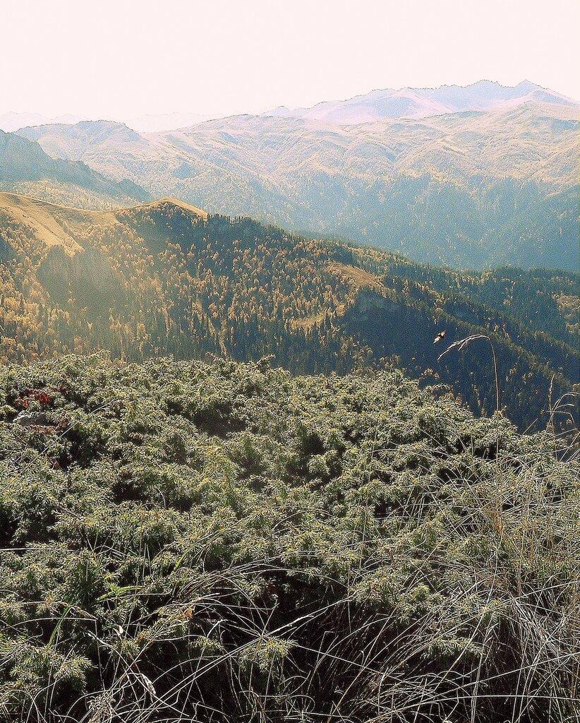 В горах, осень ...  (1).JPG