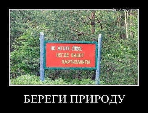 Не жгите лес, жгите вату в головах и путинизм!