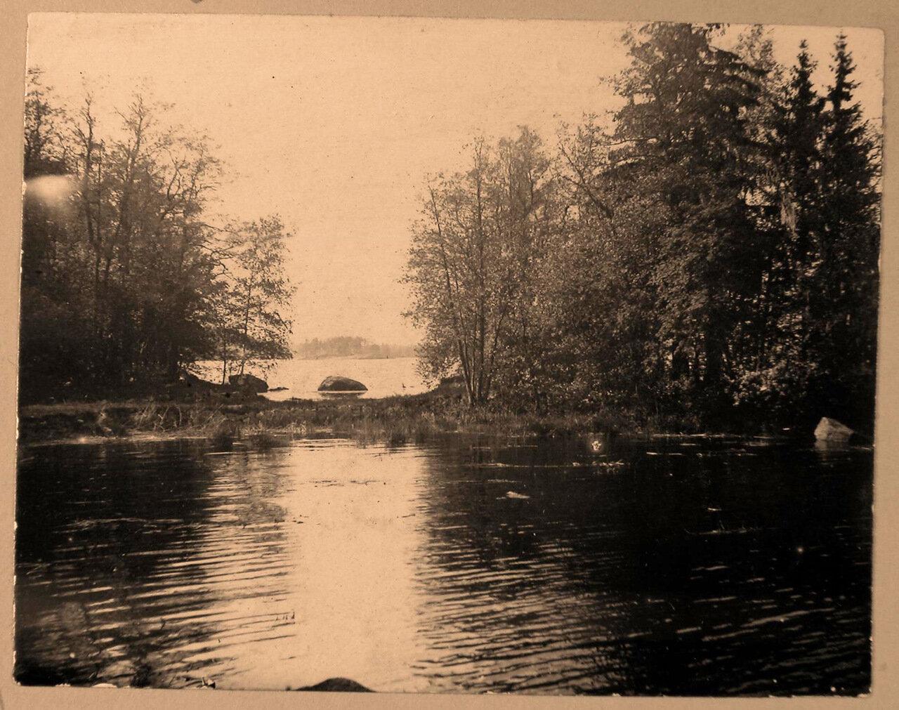 08. Вид части пруда в одном из уголков усадебного парка