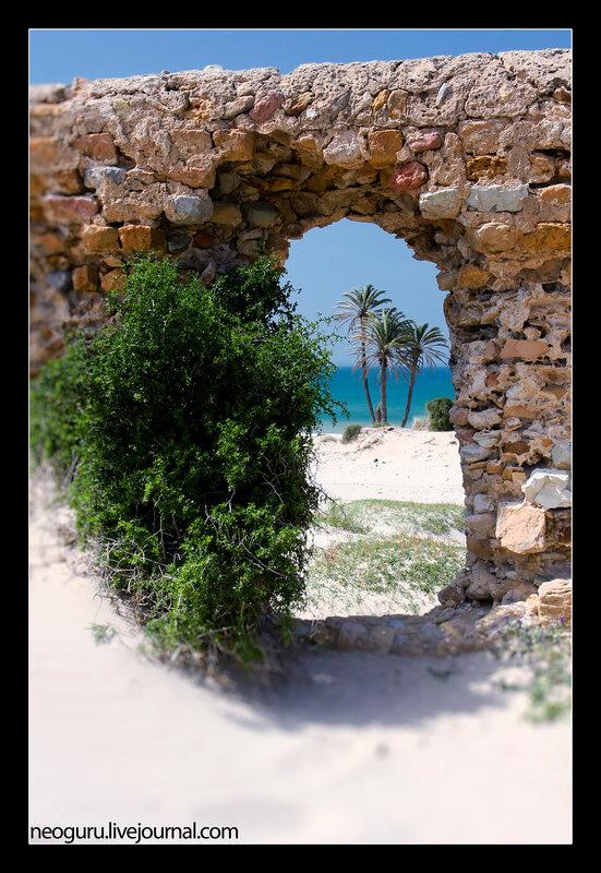 фото из туниса