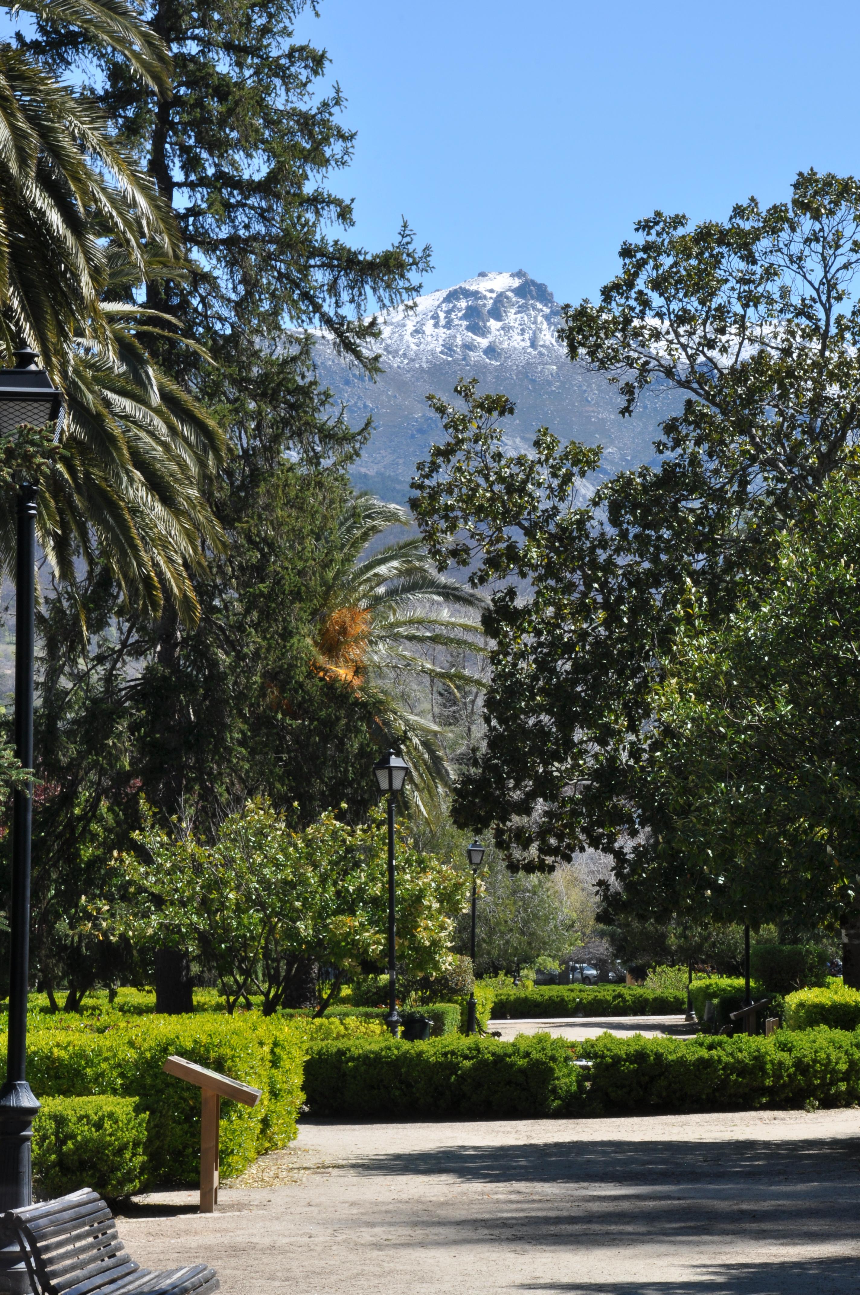 Больничный лист Ботанический сад (14 линия) Купить справку из физкультурного диспансера (ВФД) в питере