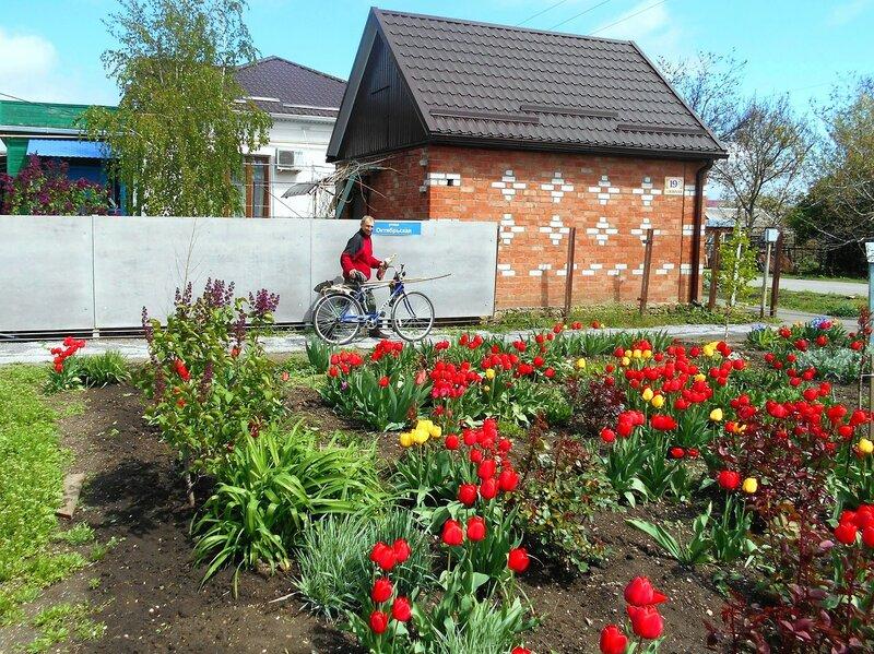 Город в цветах весенних ... DSCN5193.JPG
