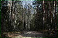 http://img-fotki.yandex.ru/get/29408/15842935.2db/0_e3058_4df28fa1_orig.png