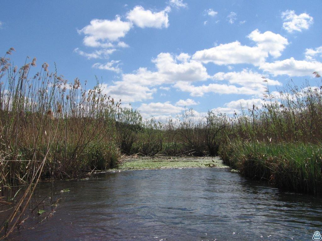 Затор на реке Боромля