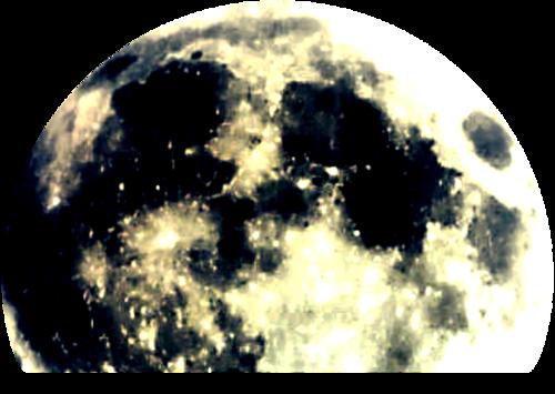 florju_HalloweenNight_elmt (39).png