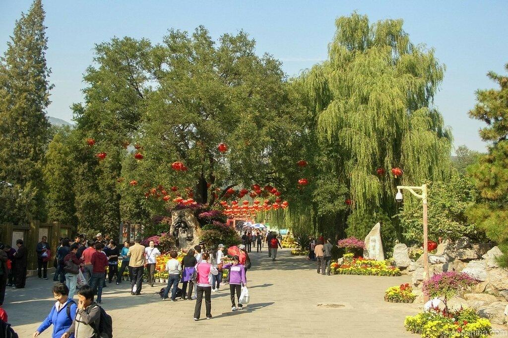 Бадачу, Пекин