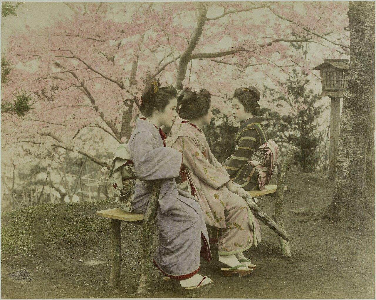 Три японки на скамейке под вишней