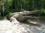 "Русалёва Мария (рук. Курилех Ольга Фёдоровна) - ""Крокодил"""