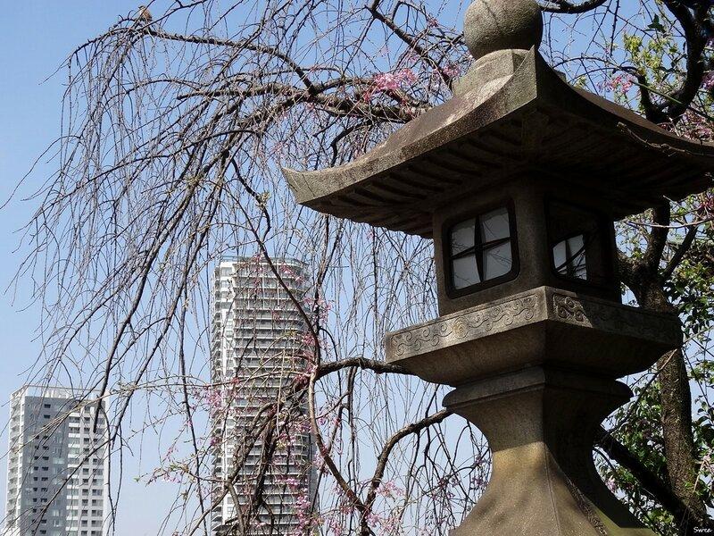 Токио Парк Уэно