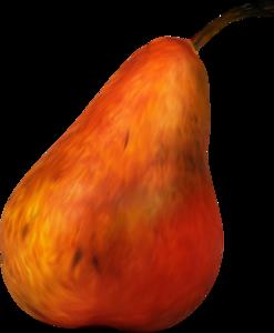 груши