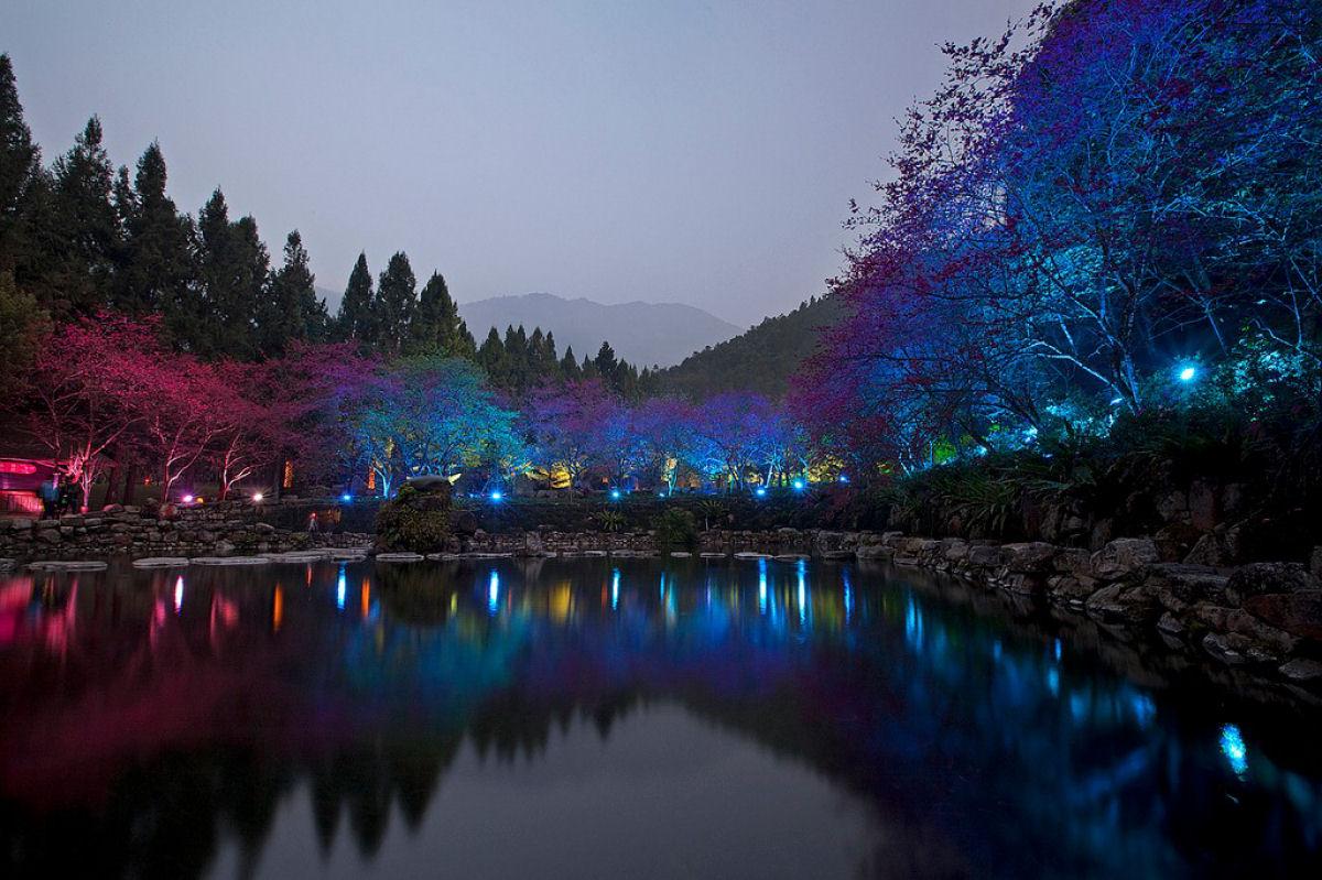 Праздник цветения сакуры на Тайване. Прекрасная деревня Формосан 0 1607a4 efc96e29 orig