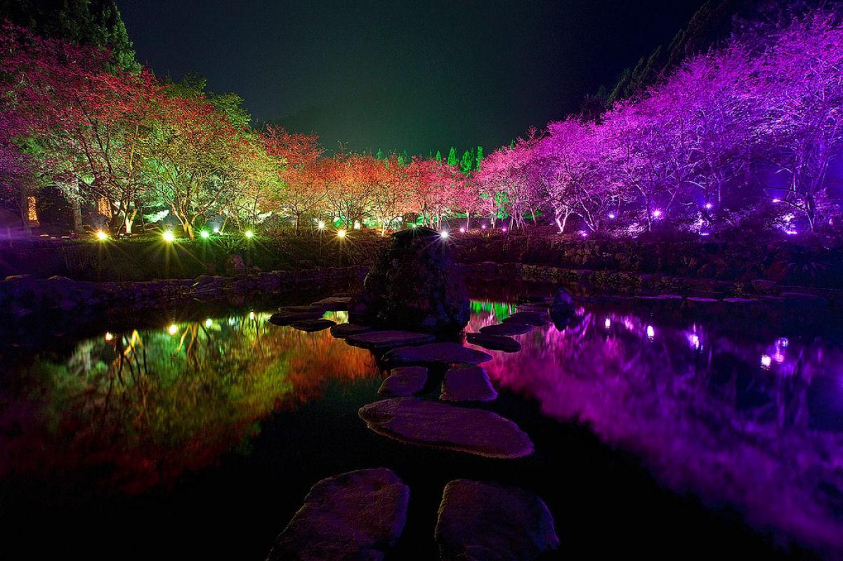 Праздник цветения сакуры на Тайване. Прекрасная деревня Формосан 0 1607a7 99ed4877 orig