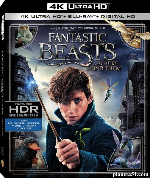Фантастические твари и где они обитают / Fantastic Beasts and Where to Find Them (2016/BDRemux/BDRip/HDRip)
