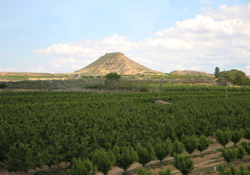 Восточный Арагон