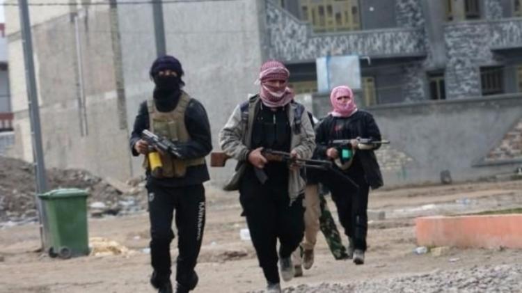 Изплена «Ан-Нусры» вСирии освободили немецкую журналистку сребёнком