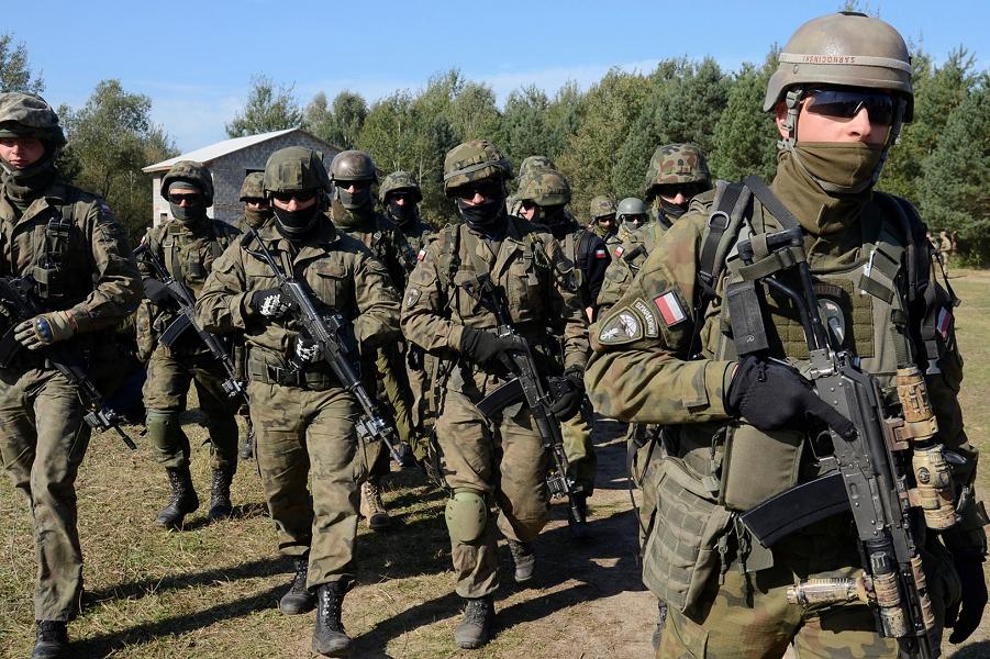 Польская нацгвардия.png