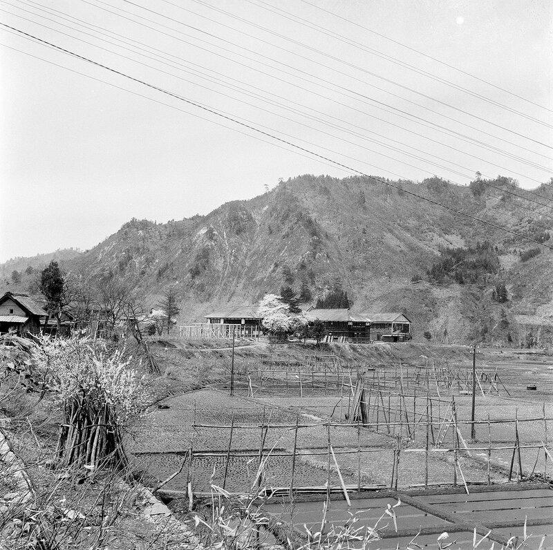 Old Farm & Mountains - 1950s Japan