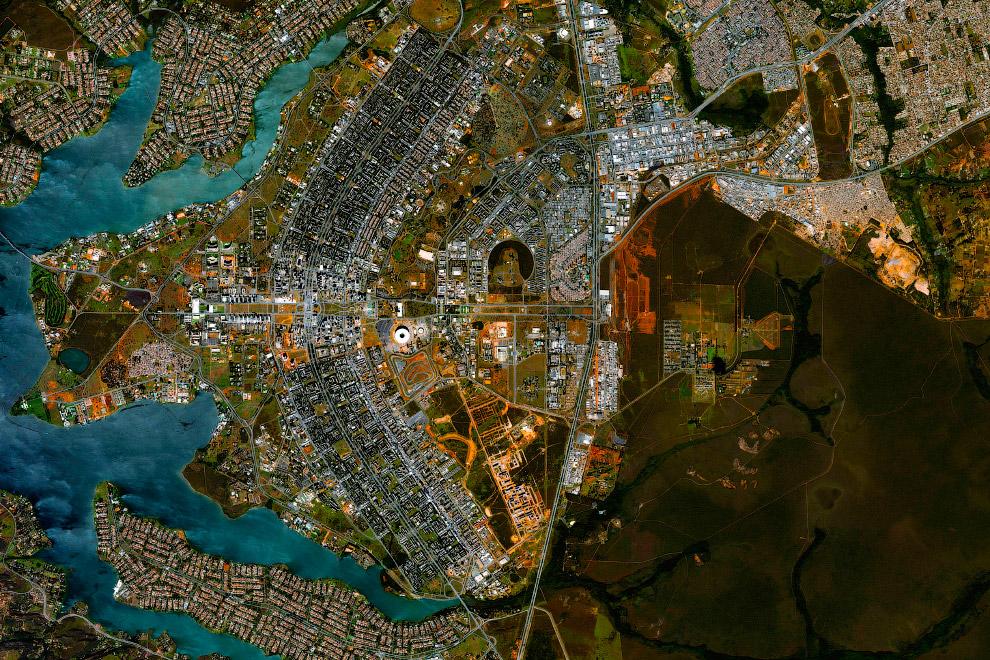 9. Уничтожение и вырубка тропических лесов Амазонки в Бразилии. Из космоса видны «облысения». (
