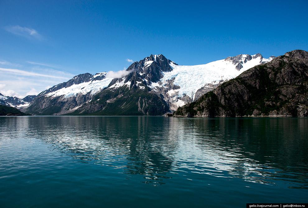 32. Обитатели парка — полярные медведи, тюлени, моржи, киты, прибрежная зона богата экзотическо