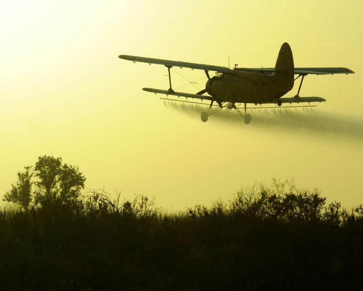 ВВоронежской области строго сел самолет «Ан-2», пилот госпитализирован
