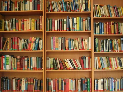 В Молдове стартовала кампания «Книга для рома»