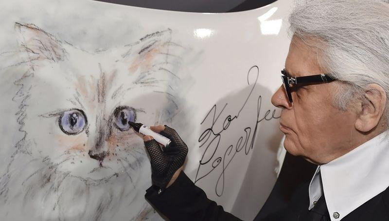 4. Ранее сообщалось, что кошка Лагерфельда запустила собственную линию одежды. В июле 2014 года в св