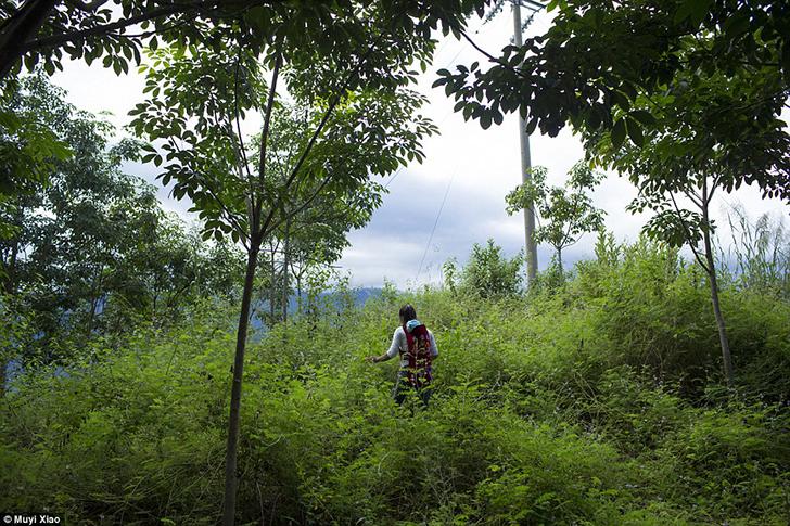 Сяо Цай несет за спиной двухмесячного сына, гуляя по лесу в деревне Гуандон.